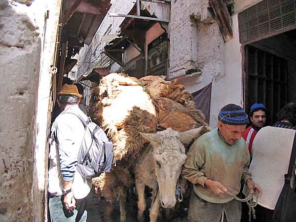 Marocco213.jpg
